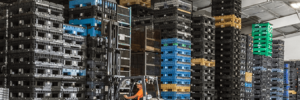 Cost-Saving Storage Solutions for Businesses in North Carolina
